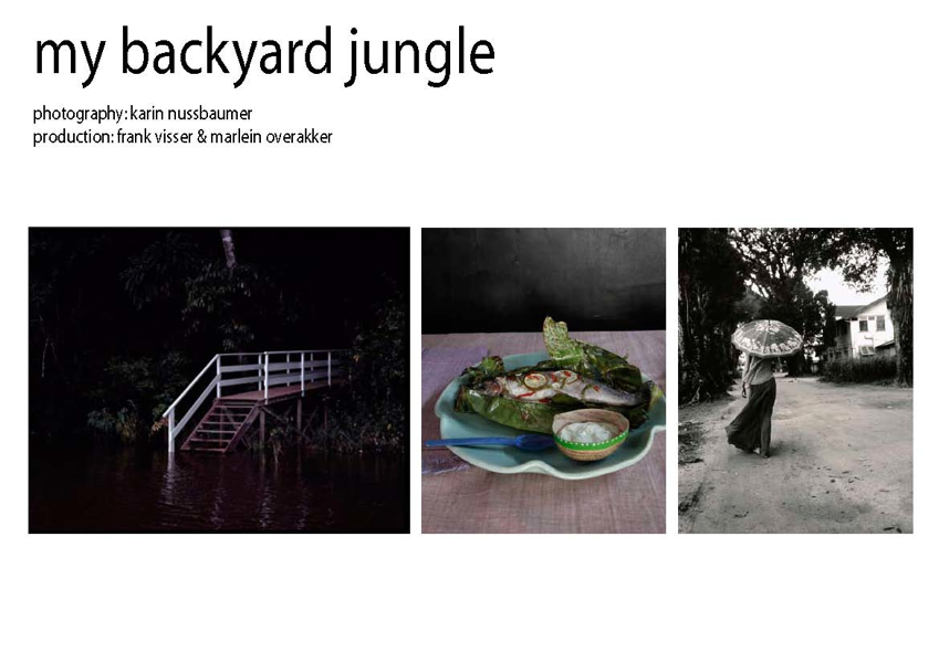 http://www.marleinoverakker.com/files/gimgs/4_suriname-my-backyard-jungle-2page01.jpg